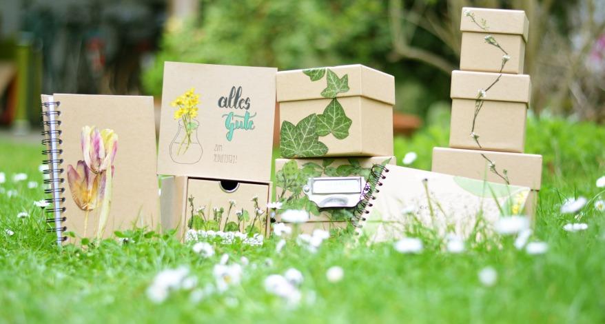 Gepresste Pflanzen Verschönern Büroartikel Sutter Büro Papeterie